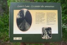 Loveline1