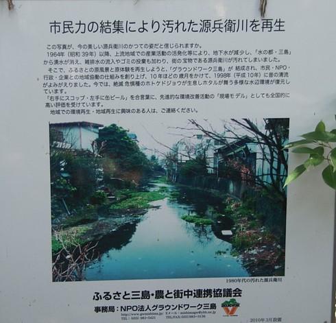 Misimakawa6